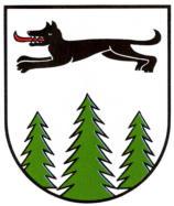 TSV Eintracht Wolfshagen
